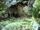 038 El Hombre y la Tierra - El lobo