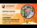 Вырубка изображений на граните Николай Васютин Ученые против мифов 5 5