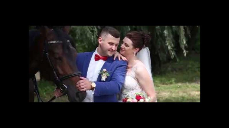 Діма і Аліна весільний кліп