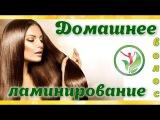 Домашнее ламинирование волос - рецепт. Натуральное средство для укладки и фикса ...