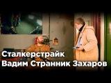 Сталкерстрайк - Вадим Странник Захаров