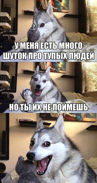 Фото №456239966 со страницы Василия Киоссе