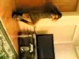 Ингушка-скромняшка 1