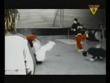 Bomfunk MCs - Freestail (Оооо как это было давно,поколению 90-х до сердца должно быть знакомо)