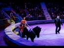 Премьера в Иркутском цирке Цирк Зверей Клыковых Филатовых