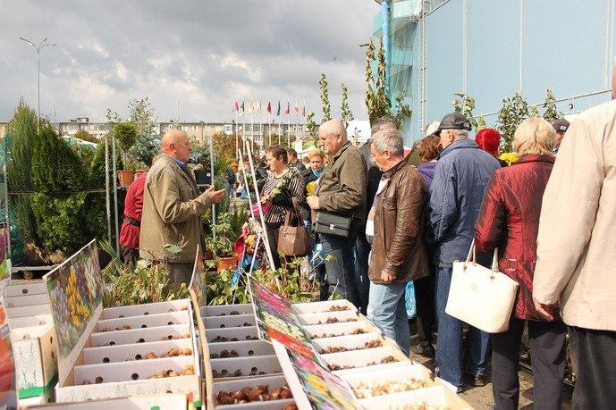 18000 дачников закроют дачный сезон в «ДонЭкспоцентр»