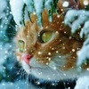 """Ветеринарная клиника """"Рыжий кот"""" на Березовской"""