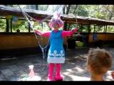 Шоу мыльных пузырей с Розочкой Мульт Тики Таки Детский праздник