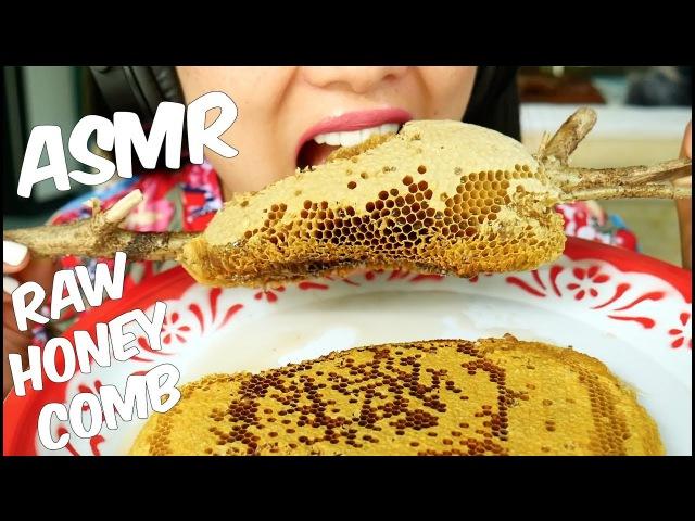 ASMR Raw Honey Comb (EXTREME STICKY EATING SOUNDS) No Talking | SAS-ASMR