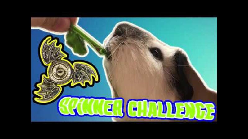 Capone Spinner Challenge (RUS)   Капоне вызывает покрутить Спиннер