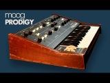 MOOG PRODIGY Analog Synthesizer 1979 HD DEMO