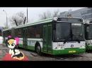 Поездка на автобусе ЛиАЗ-6213.21 № 041133 Маршрут № 223 Москва