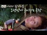 """김병만, 5개월 만에 돌아온 심경 """"마음이 너무 편해‥"""" @정글의 법칙 294회 20171208"""