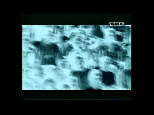 S.W.A.T. - Kill a dead fly
