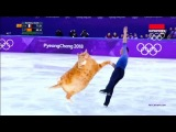 9GAG Go Fun The World on Instagram Graceful figure skater Zarathustra of Fat Cat Art dominates the rink.