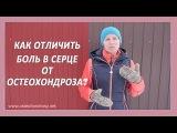 Как отличить остеохондроз от боли в сердце Ответ Александры Бониной