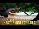 Остров Сурин 2 Прыгаю с Тарзанки лучший Подводный мир в Тайланде