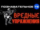 Вредные упражнения Познавательное ТВ Герман Тюхтин
