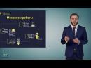 🔴 Кэшбери видео презентация компании $$$ Новичок Старт