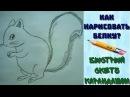 КАК НАРИСОВАТЬ БЕЛКУ Быстрый карандашный набросок HOW TO DRAW A SQUIRREL