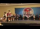 Mid Atlantic Regional Oireachtas Parade of Champs 2017 Ирландские танцы