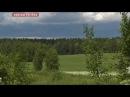 Медведь напугал белорусских крестьян
