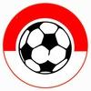 Нити Арена - футбол, волейбол , праздники Рязань