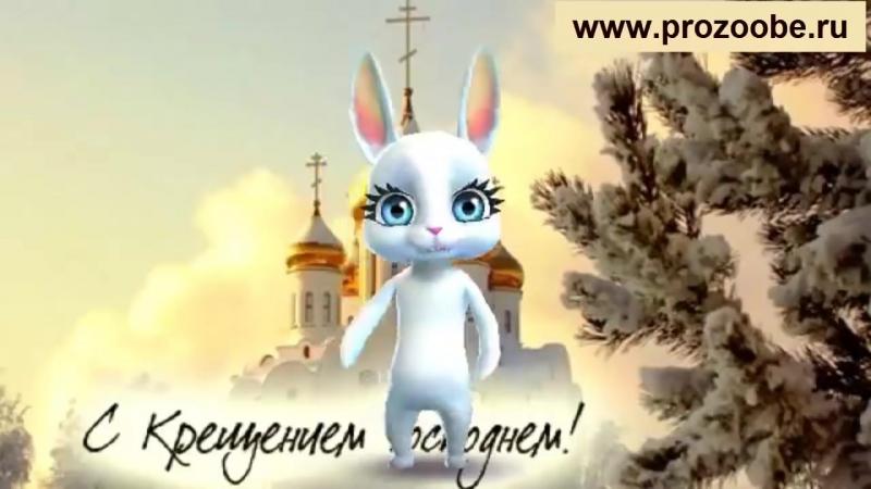S_Krescheniem_✵✵✵_Divnii_den_Kreschenie_Gospodne_✵✵✵_Pozdravlenie_ot_Zaiki_Domashnei_Hozyaiki.mp4