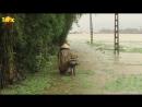 Наводнение и грязевые потоки во Вьетнаме 15.10.2017
