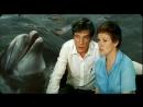 Люди и Дельфины ( часть - 1 ) ...