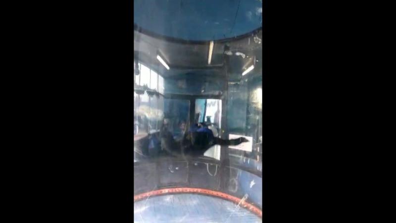 Ростик в аэротрубе