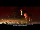 Kingdom Come: Deliverance - Зоофилия, всё по ТМски