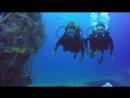 Open Water Diver  course in diving club Aqua Star 5* PADi