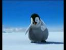 Танец пингвинов)