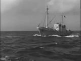 Лев Барашков Звезда рыбака