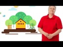 Голова садовая Циркон Полное руководство для дачников