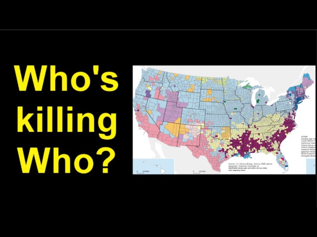 Who's killing who, by race and gender, FBI statistics.