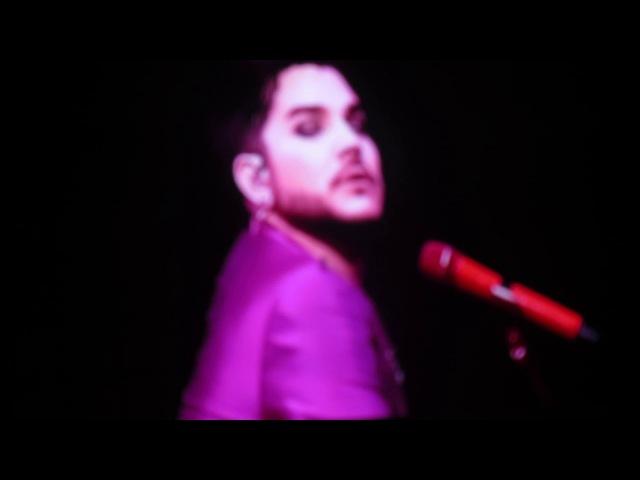 Queen Adam Lambert: Belfast 2017 - Don't Stop Me Now / Bicycle Race / I'm In Love With My Car