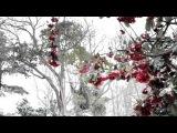 Vaktinde Gel Sevgilim - Orhan Gencebay Lyric Video - HD
