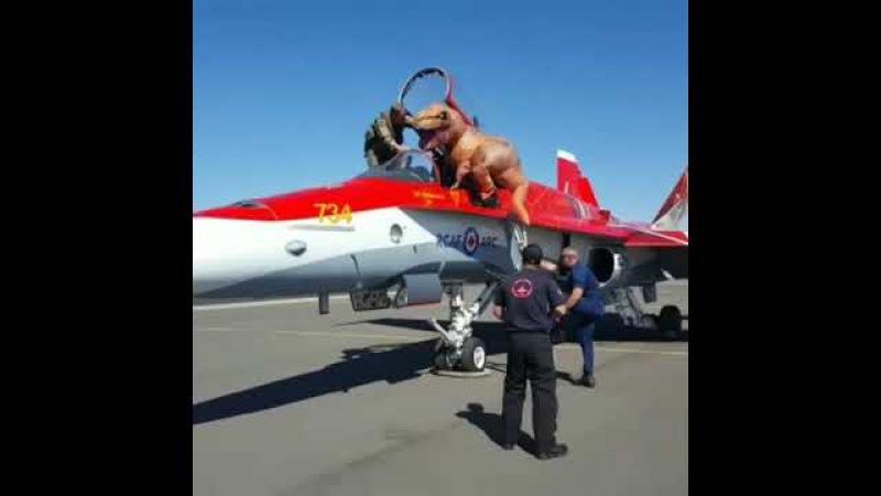 Годзилла в жизни, проводит инструктаж для пилотов стран НАТО.