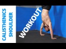 Calisthenics Shoulder Workout - Strong Delts w/ Body Weight!