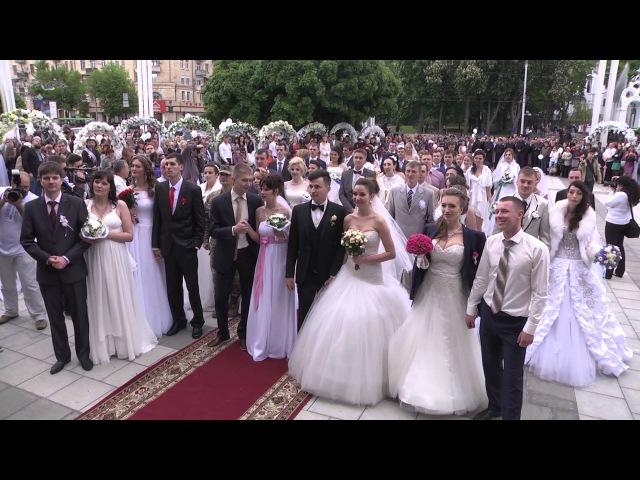 Свадебный рекорд Украины_Счастливый Город_Харьков_Фейерверк любви