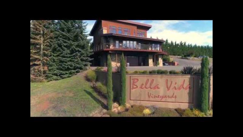 Виноградники Bella Vida / Bella Vida Vineyards.