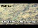 Easy Shiner