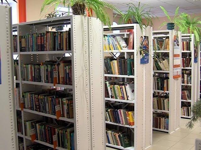 Республиканская детско-юношеская библиотека Марий Эл: три года на новом месте