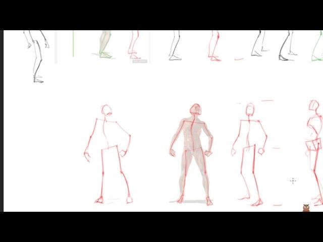 как быстро освоить пропорции человека