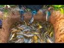 КАНАЛ ПРИКОЛЫ НА РЫБАЛКЕ ЭТОТ 18 ЛЕТНИЙ РЫБАК ВОЙДЁТ В ИСТОРИЮ ЗА ТАКОЙ СПОСОБ ЛОВЛИ ! Вот это рыбалка 2018 Ты не поверишь зрелище не для слабонервных ЭТОТ РЫБАК ГОВОРИЛ: В РОССИИ ДО ТАКОГО НЕ ДОДУМАЮТСЯ! Вот это рыбалка 2018 Ты не поверишь !