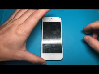 Проклейка рамки дисплея iPhone 5.