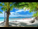 #AlphaCash Очередной перевод из профитбокса в мультикошелек и вывод прибыли на мелкие расходы))
