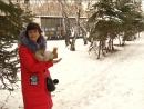 К корреспонденту Антенны-7 пришла белочка